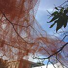 Edgewater Netting by Arlene Zapata