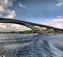 A Bridge in Stockholm  (1) by Larry Lingard-Davis