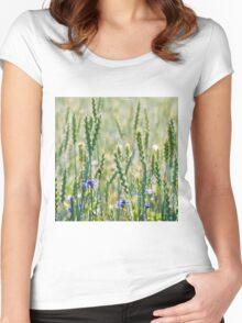 Cornflowers in a wheat field Women's Fitted Scoop T-Shirt