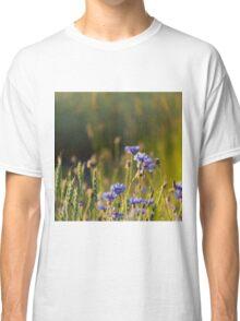 Cornflowers and common wheat Classic T-Shirt