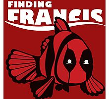 Finding Francis Photographic Print