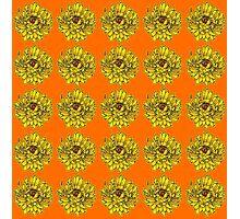 Yellow Flowers on Orange Background Photographic Print