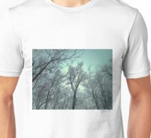 The Snow Is Passing Unisex T-Shirt