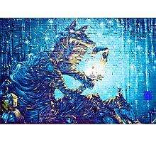 Mural Graffiti  Witchery  Photographic Print