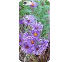 Autumn Posies iPhone Case/Skin
