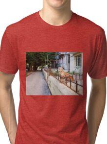 Dog in Havana Tri-blend T-Shirt