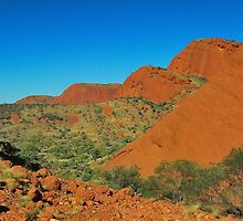 The Valley of the Olgas by Penny Smith