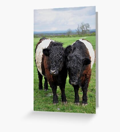 Twin Bands Greeting Card