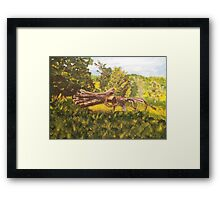 Log and Barbed Wire Framed Print