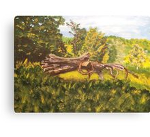 Log and Barbed Wire Canvas Print
