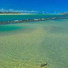 Lagoon View by Penny Smith