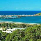 Mutton Bird Island and Jetty, Coffs Harbour by Penny Smith