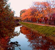 Hidden Canal in the middle of the city of Paterson NJ by Jane Neill-Hancock