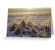 Snowy Sunrise Greeting Card