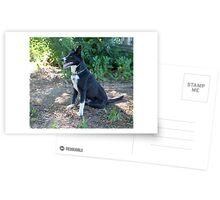 Cassie... Postcards