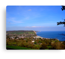 Overview of Sidmouth Canvas Print