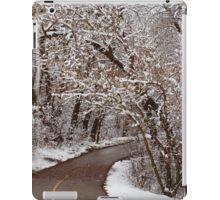 Snow Canopy iPad Case/Skin