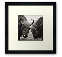 a conversation Framed Print