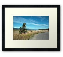 Road, sky, tree and wild grasses landscape photography Framed Print
