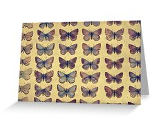 The Butterfly Collection 1 Greeting Card