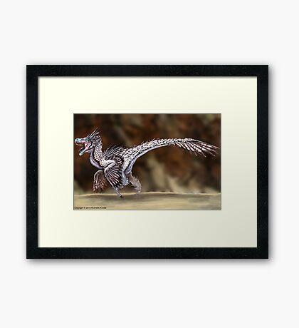 Velociraptor Reconstruction Framed Print