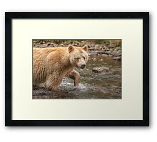 Spirit walks in water Framed Print