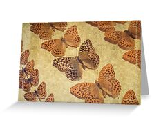 The Butterfly Collection 4 Greeting Card