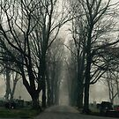 Foggy Path through the Cemetery by storiedthreads