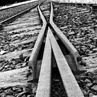 Rails to Nowhere by Bairdzpics