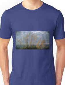 Pampas grass,Cornwall UK. Unisex T-Shirt