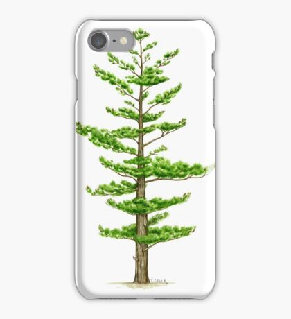 White Pine (Pinus strobus) iPhone Case/Skin