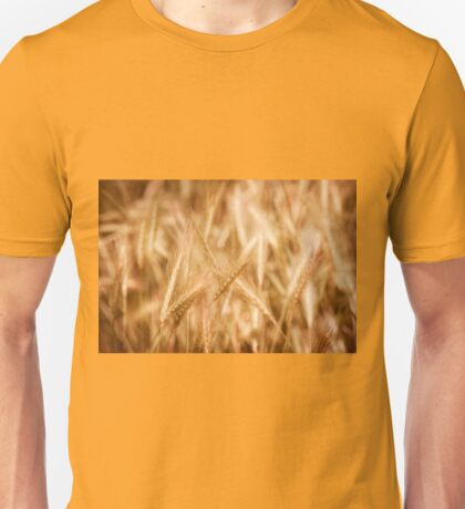 Golden ripe cereal ears grow Unisex T-Shirt