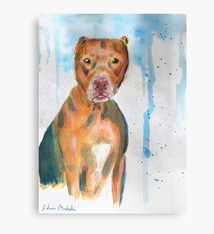 Red Nose Pit Bull Loose Watercolor Portrait Canvas Print