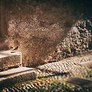 Sparrow on stone steps by Silvia Ganora