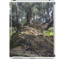 Fallen Log HDR iPad Case/Skin