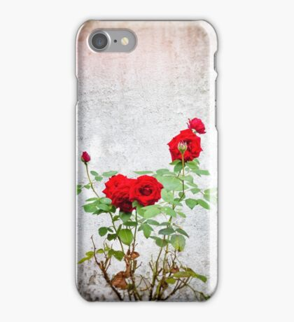 Red roses against wall iPhone Case/Skin