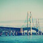 Mackinac Bridge by perkinsdesigns