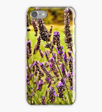Magische Lavendel-Wiese iPhone Case/Skin