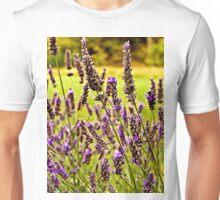 Magische Lavendel-Wiese Unisex T-Shirt