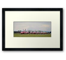 Red Arrows Taxi Framed Print