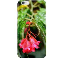 simplicity can be beautiful iPhone Case/Skin