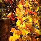 Essence of Autumn by Fay270