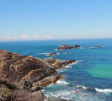 Rocky path- Seal Rocks NSW by ©Josephine Caruana