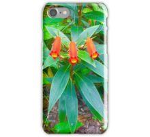 Bolivian Sunset iPhone Case/Skin