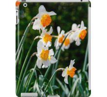 Spring Daffodil Flowers iPad Case/Skin