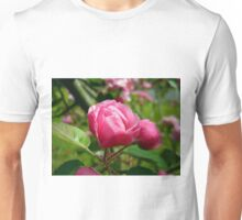 A Single Pink Blossom Unisex T-Shirt