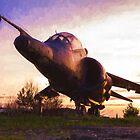 Harrier Sunset by destinysagent