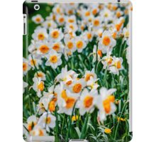 Countless Spring daffodils  iPad Case/Skin