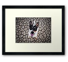 In His Eyes Framed Print