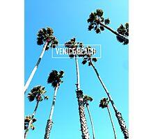 Venice Palms Photographic Print